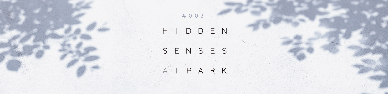#002 HIDDEN SENSES AT PARK